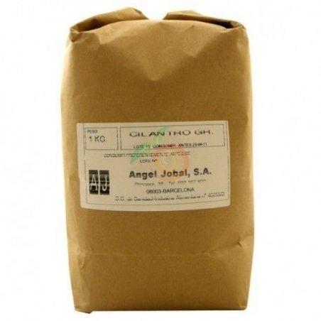 Cilantro grano 1 kg angel jobal