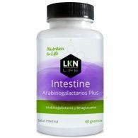 Intestine arabinogalactanos plus 60 gramos lkn life