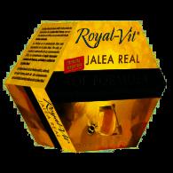 Jalea real top formula royal vit 20 viales dietisa
