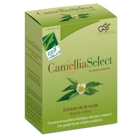Camellia select extracto té verde 60 cápsulas 100 natural